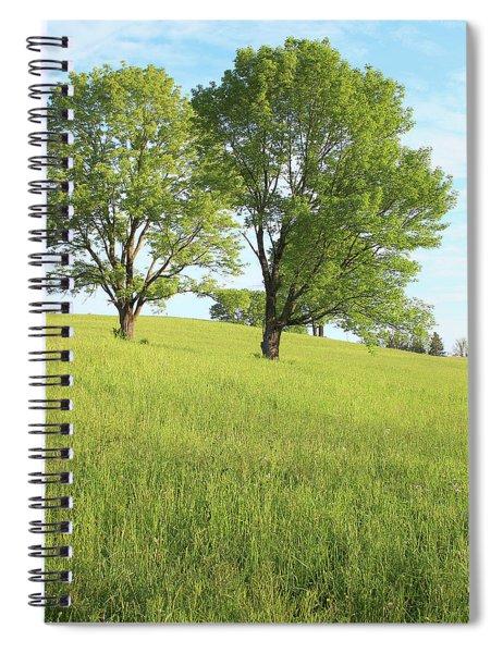 Summer Trees 2 Spiral Notebook