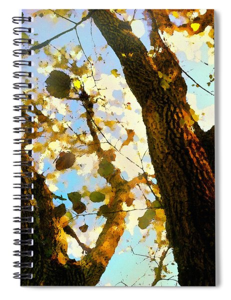 Treetop Abstract-look Up A Tree Spiral Notebook