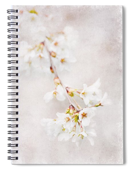 Triadelphia Cherry Blossoms Spiral Notebook