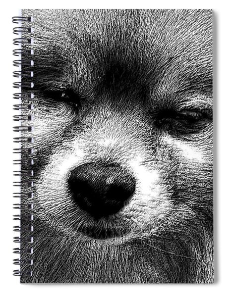 Tribute To Jojo Rip Buddy Spiral Notebook