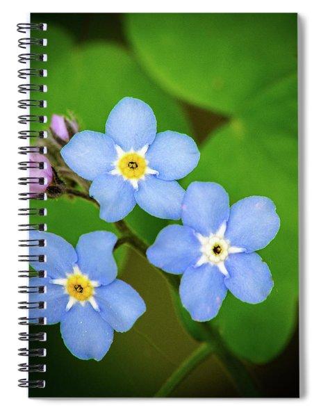 Triplets Spiral Notebook
