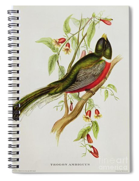 Trogon Ambiguus Spiral Notebook