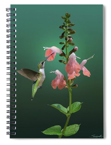 Tropical Sage And Hummingbird Spiral Notebook