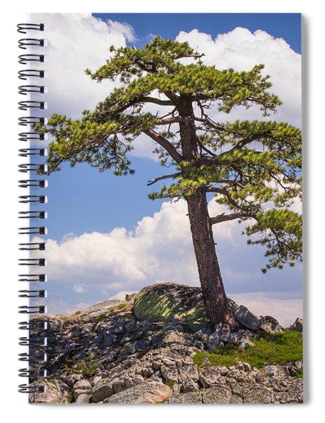 Truckee  Spiral Notebook