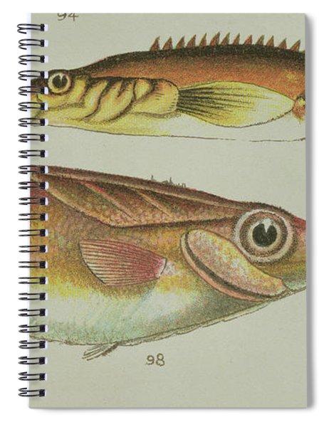 Trumpet Fish Spiral Notebook