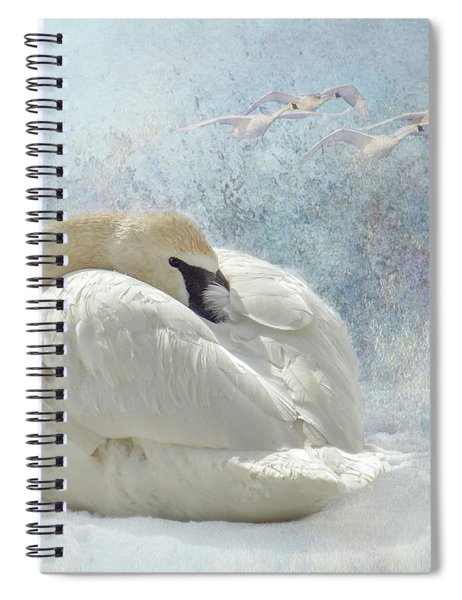Trumpeter Textures #1 - Swan Feather Spiral Notebook by Patti Deters