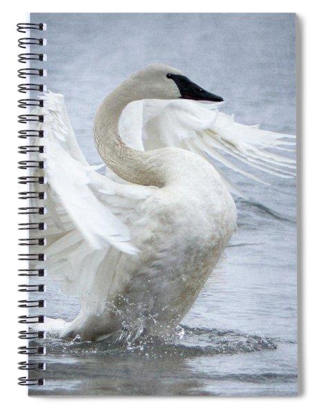 Trumpeter Swan - Misty Display 2 Spiral Notebook