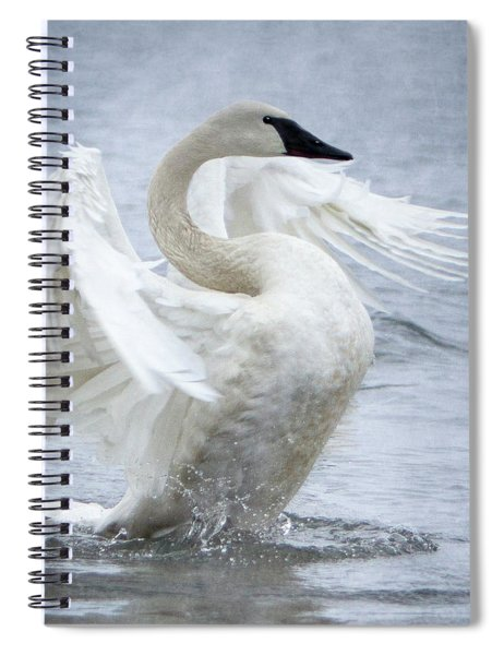 Spiral Notebook featuring the photograph Trumpeter Swan - Misty Display 2 by Patti Deters