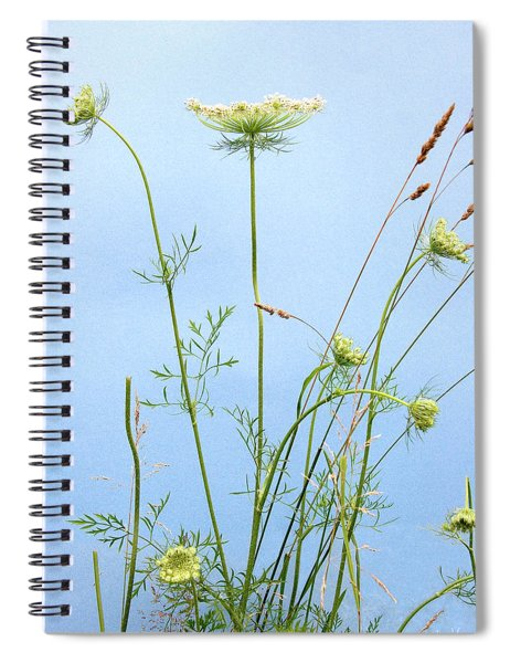 Tuft Of Queen Anne's Lace Spiral Notebook
