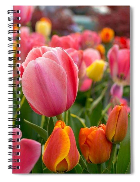 Tulip Bed Spiral Notebook