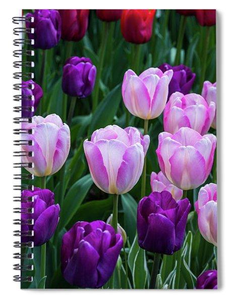 Tulip Blush Spiral Notebook