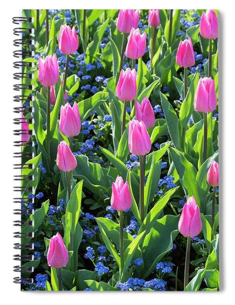 Tulip Christmas Dream Flowers Spiral Notebook