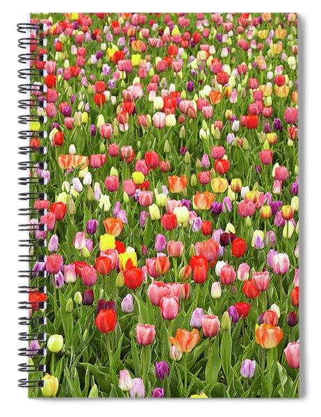 Tulip Field Spiral Notebook