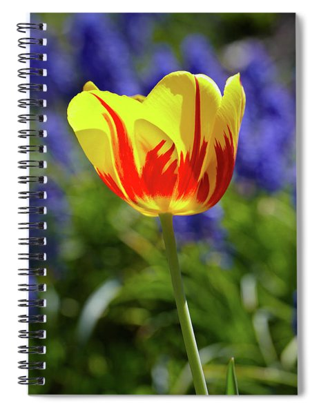 Tulip Flame Spiral Notebook