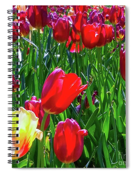 Tulip Garden In Bloom Spiral Notebook