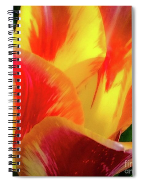 Tulip In Bloom Spiral Notebook