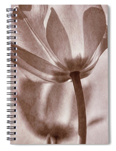Tulip Transparency I Spiral Notebook