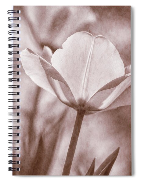 Tulip Transparency IIi Spiral Notebook