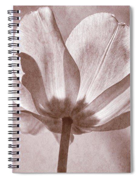 Tulip Transparency Iv Spiral Notebook
