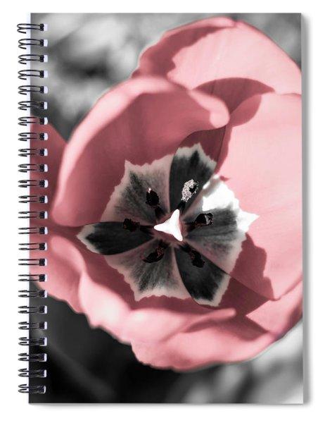 Tulip Up Close Spiral Notebook