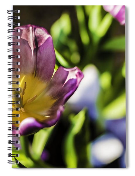 Tulips At The End Spiral Notebook