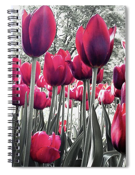 Tulips Tinted Spiral Notebook