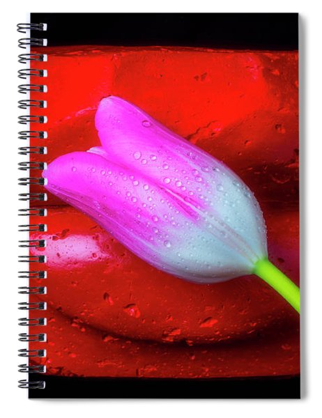 Tulips To Lips Spiral Notebook