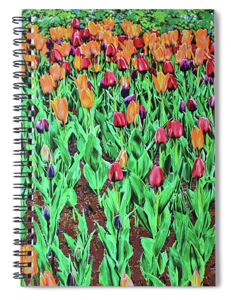 Tulips Tulips Everywhere Spiral Notebook