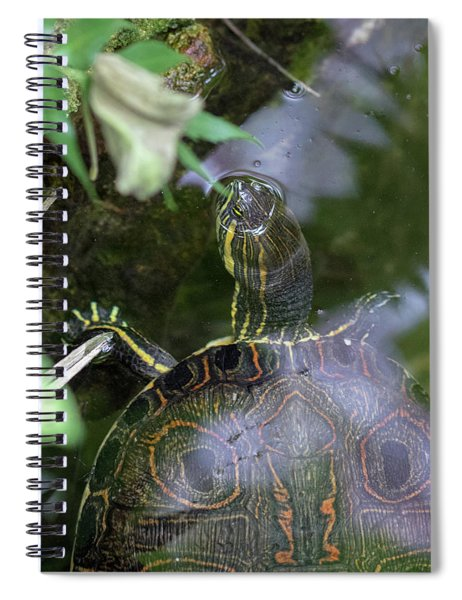 Turtle Getting Some Air Spiral Notebook