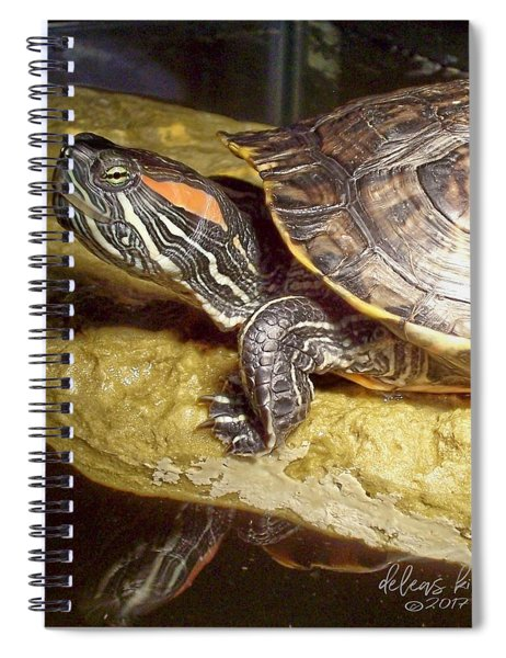 Turtle Reflections Spiral Notebook