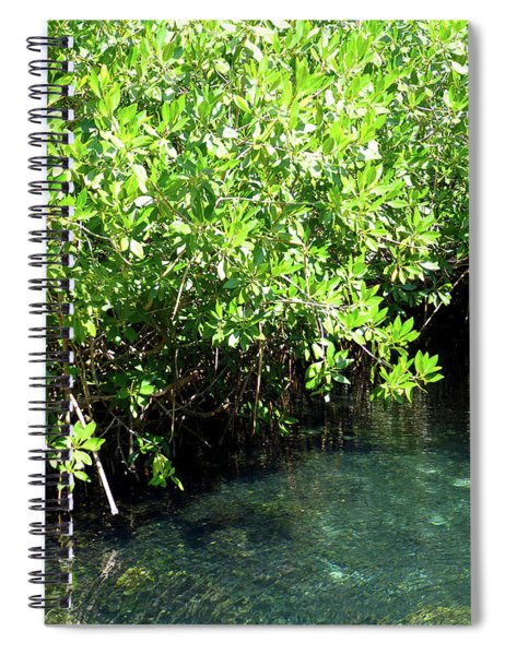 Turtle Swim Spiral Notebook
