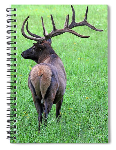 Twelve Point Stud Spiral Notebook
