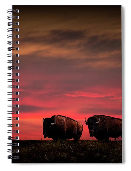 Two American Buffalo Bison At Sunset Spiral Notebook