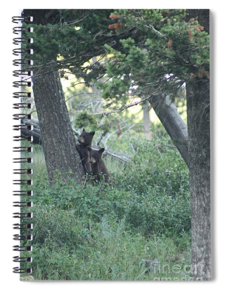Two Bear Cubs Spiral Notebook