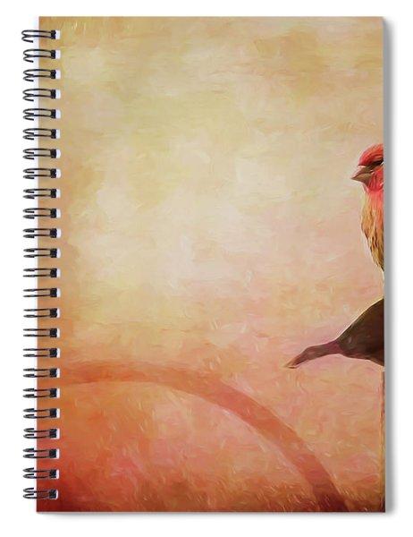 Two Birds In The Mist Spiral Notebook