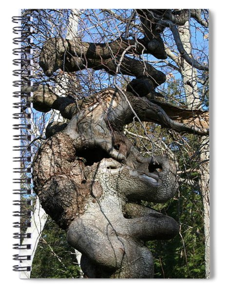 Two Elephants In A Tree Spiral Notebook