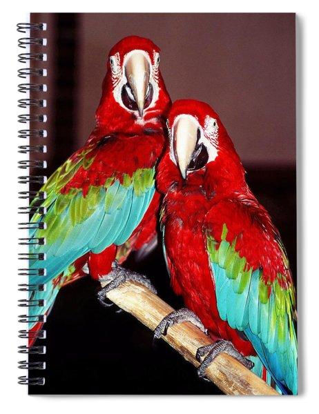 Two Friends ... Spiral Notebook