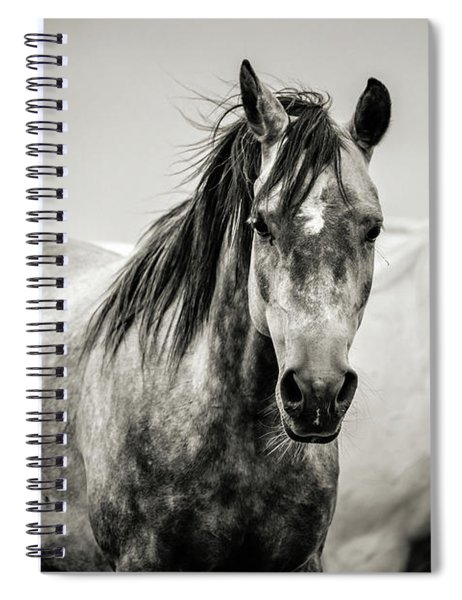 Two Horses In Black And White Spiral Notebook