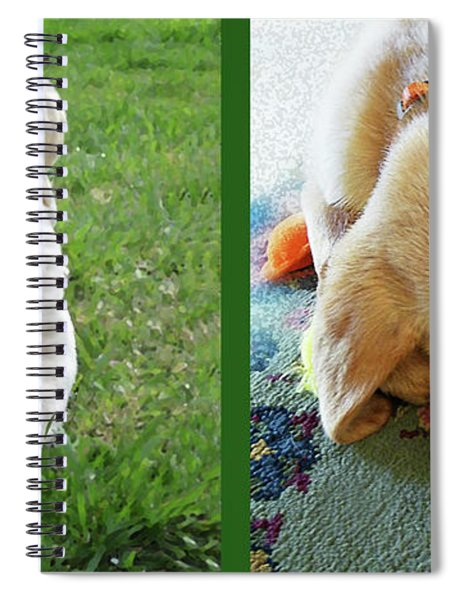 Two Puppies Two Yellow Labs Spiral Notebook