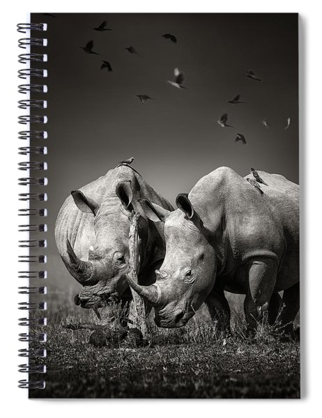 Two Rhinoceros With Birds In Bw Spiral Notebook