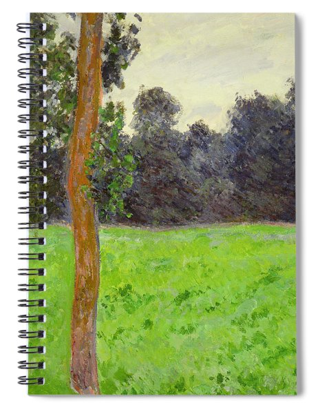 Two Trees In A Field Spiral Notebook