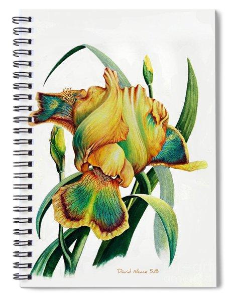 Tye Dyed Spiral Notebook