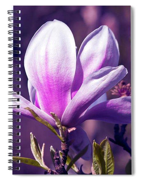 Ultra Violet Magnolia  Spiral Notebook
