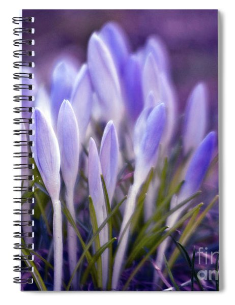 Ultra Violet Sound Spiral Notebook