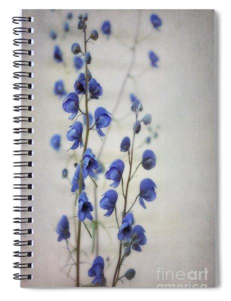 Ultramarine  Spiral Notebook