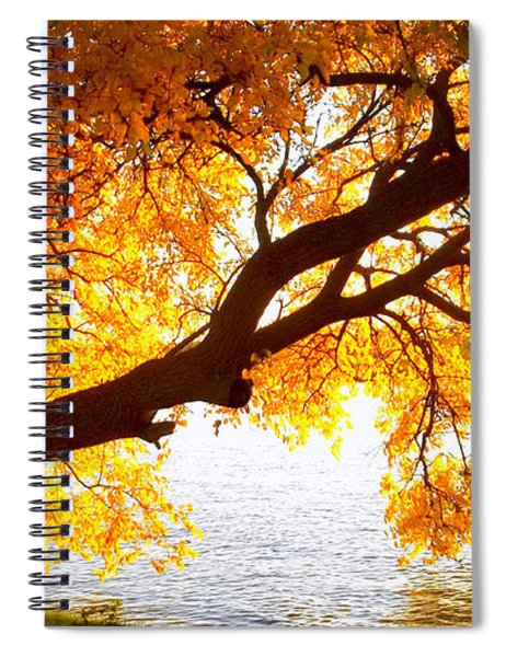 Under The Yellow Tree Spiral Notebook