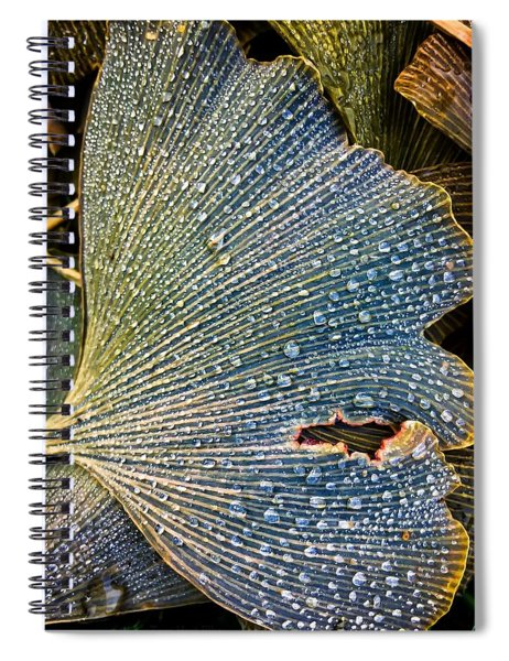 Underfoot Fortune Spiral Notebook