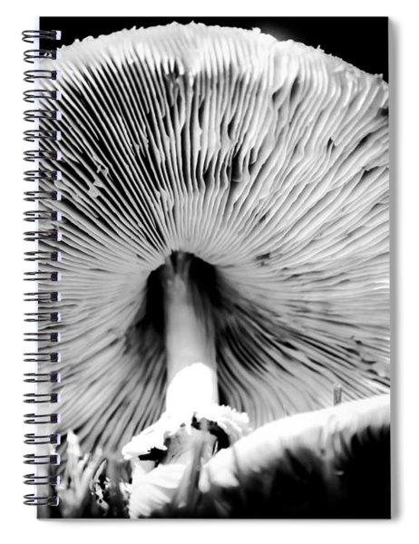 Underworld Secrets Spiral Notebook