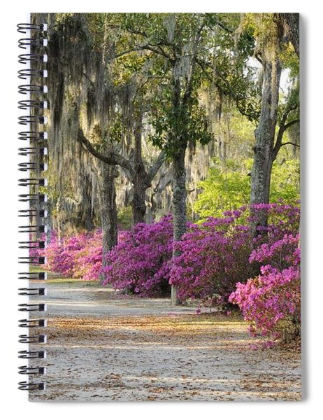 Unpaved Road With Azaleas And Oaks Spiral Notebook