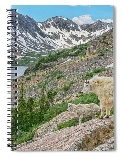 Until One Has Loved An Animal, A Part Of One's Soul Remains Unawakened.  Spiral Notebook